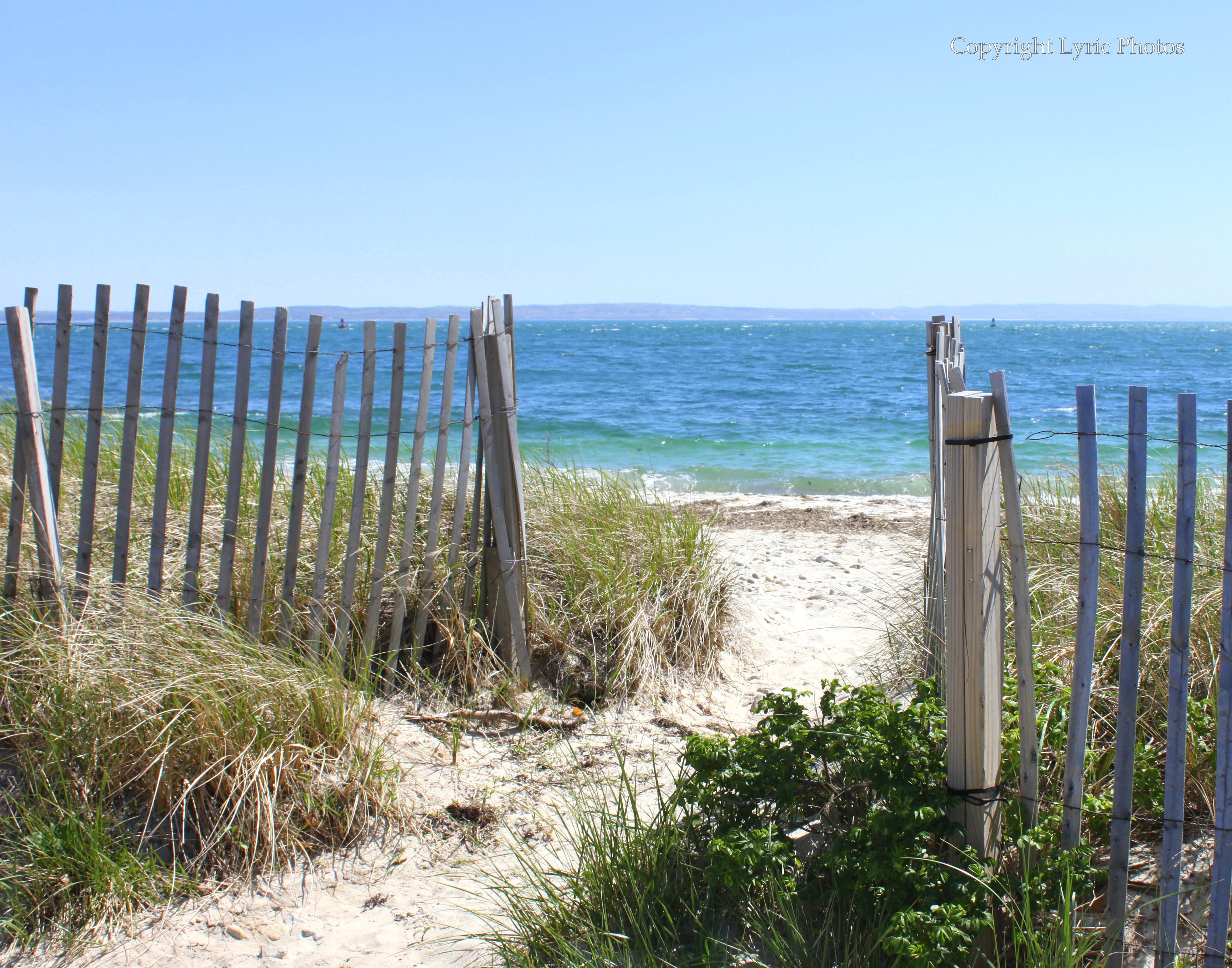 falmouth ma cape cod beach photo