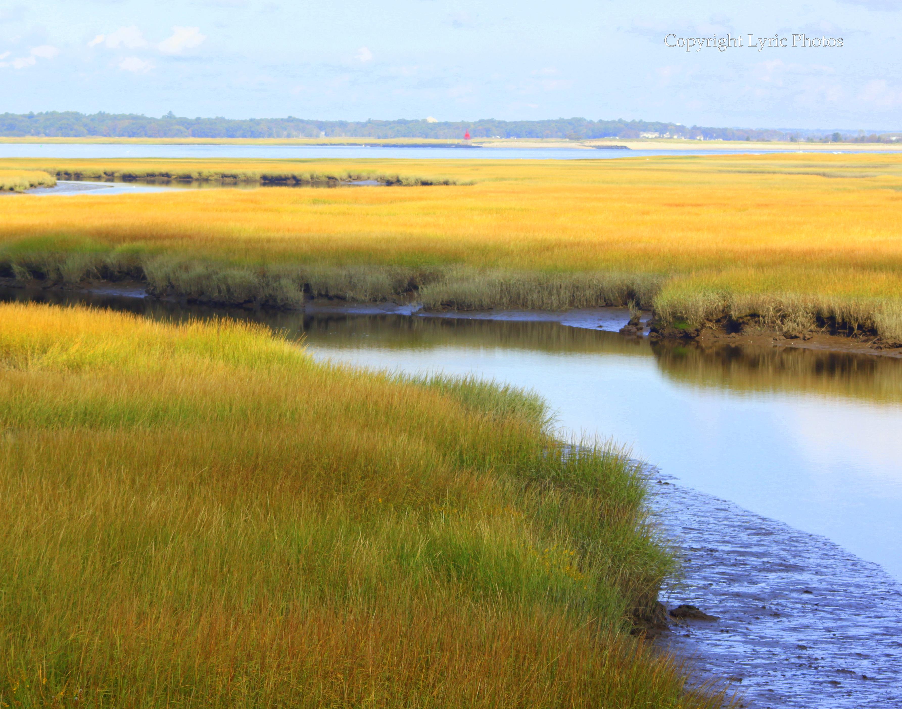 salt marsh plum island photograph