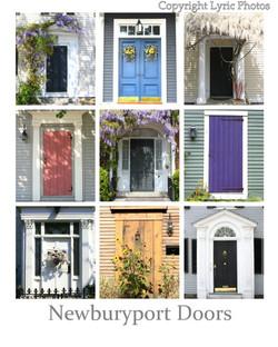 Newuryport Doors Plum Island poster
