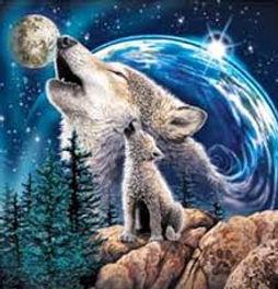 wolfdream.jpg