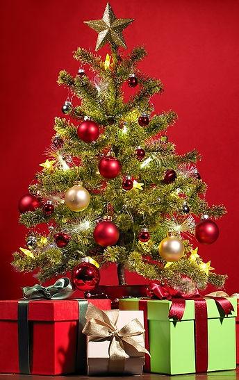 christmas-1869902_1280 (1).jpg