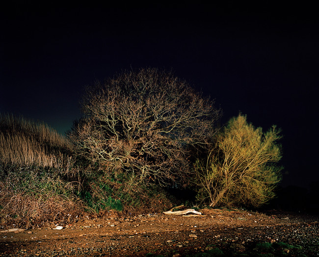 Oglet by Night.jpg