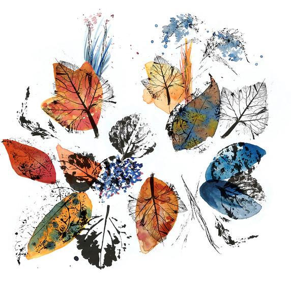 série das folhas