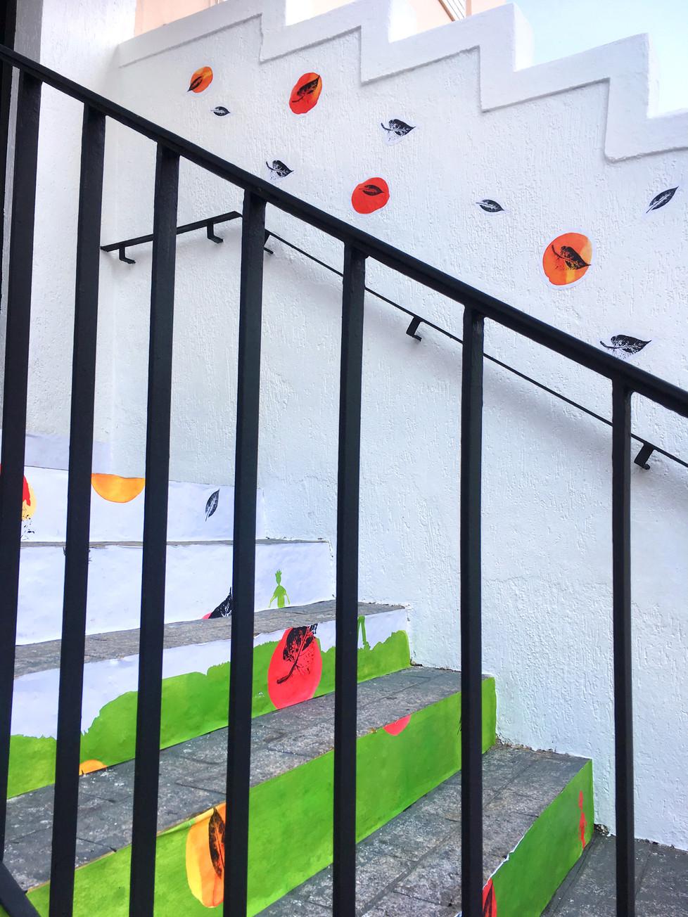 8 todo escada.jpg