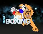 logo JM BOXING