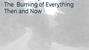 LOW ROAD CAPITALISM: THE BURNING OF EVERYTHING THEN AND NOW