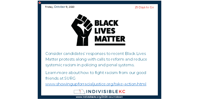 Consider candidates' responses to recent Black Lives Matter protests along with calls to reform and reduce systemic racism in policing and penal systems. Learn more about how to fight racism from our good friends at SURG www.showingupforracialjustice.org/take-action.html