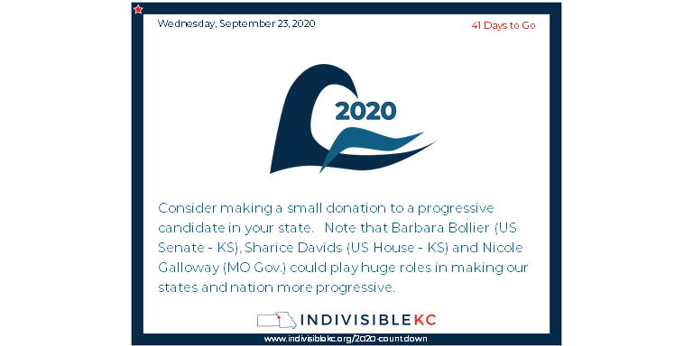 You can volunteer or donate to these progressive candidates here: www.bollierforkansas.com  www.shariceforcongress.com www.nicolegalloway.com