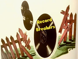 vinyl records breaking through fence.