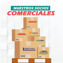 Socios Comerciales Asesor Logistico