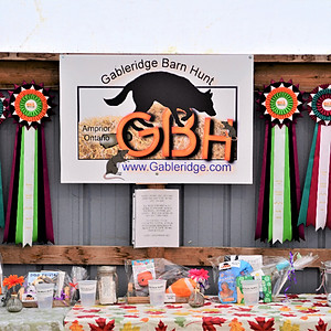 Corn Cob and Apple Pie Barn Hunt Trial Saturday