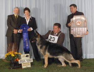 2008  Futurity Victrix