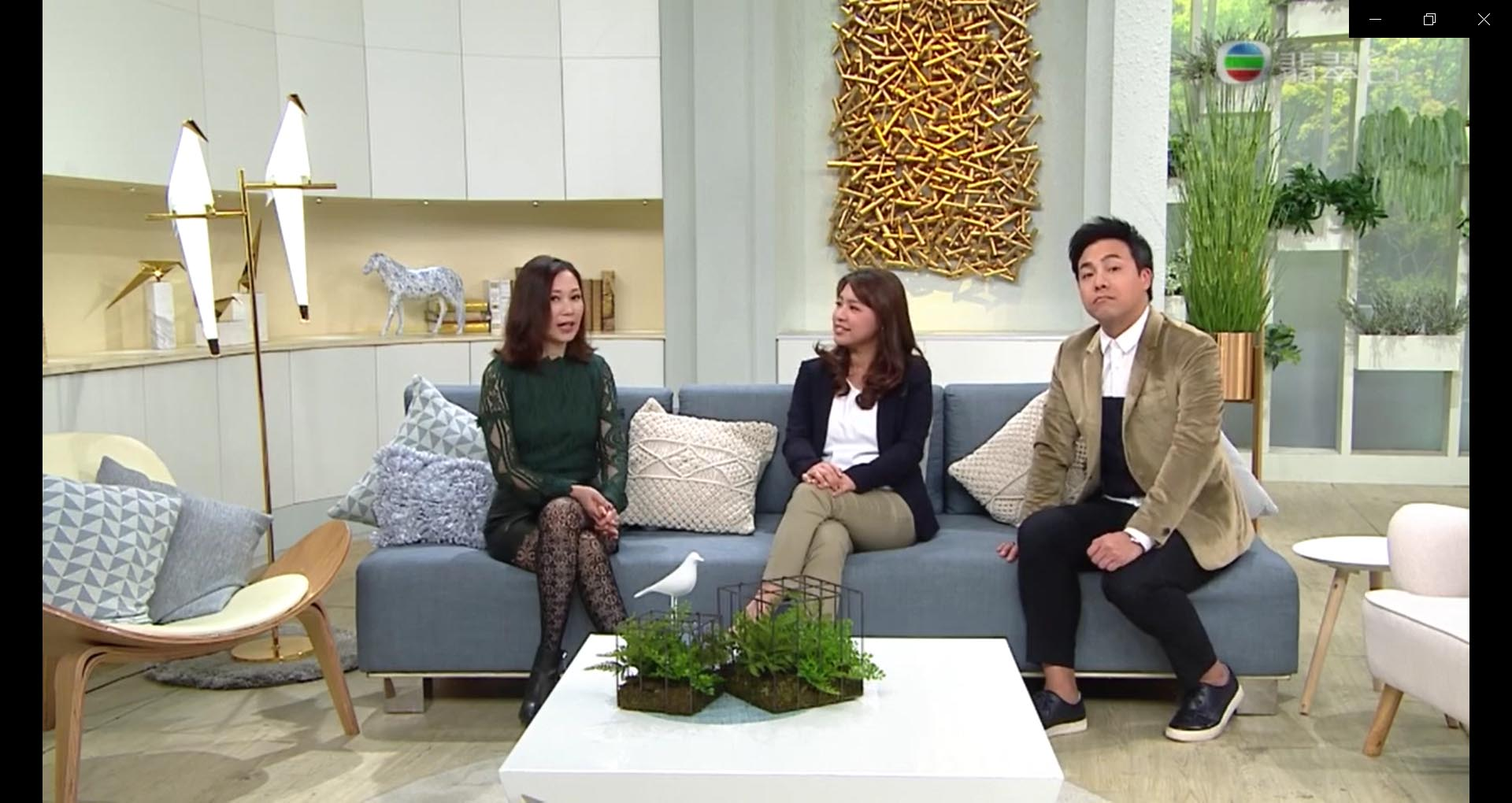TVB 流行都市訪問