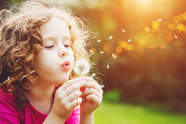 Little curly girl blowing dandelion..jpg