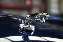 Jaguar XJS 4.0 cabriolet