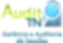 Logo_AuditTN.png