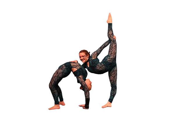 acro no background.png