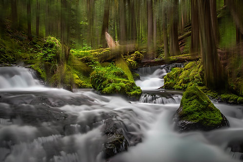 Panther Creek Abstract, Washington