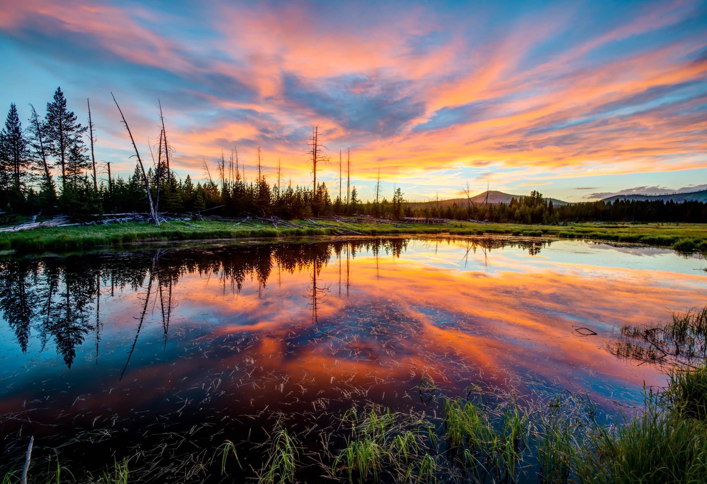 Yellowstone near Canyon camping area