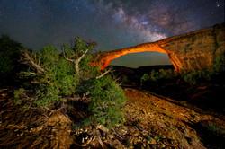 Bridges NM