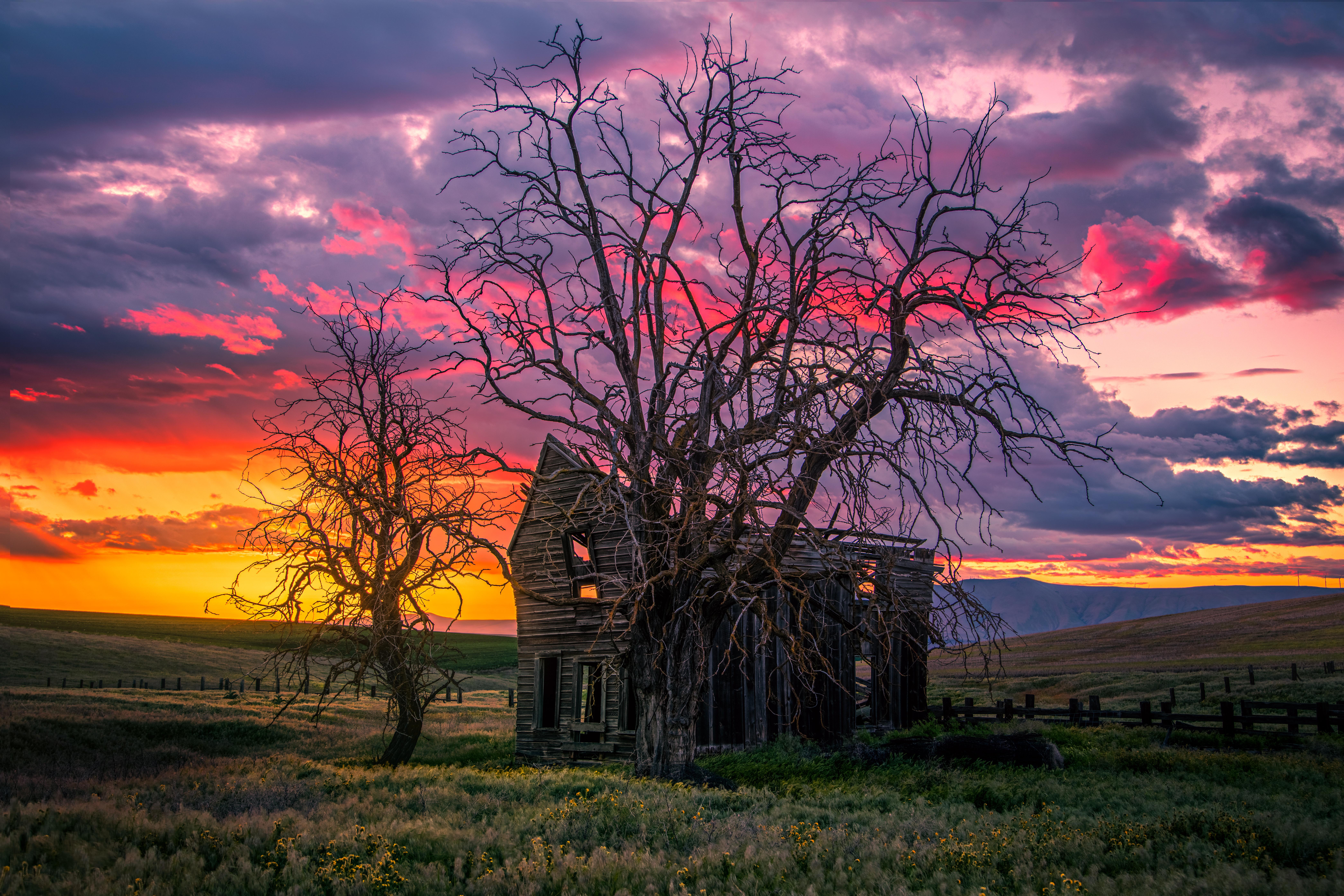 McDermid Homestead, Oregon