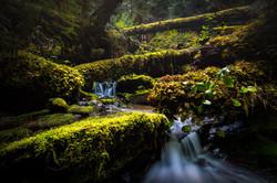 Panther Grotto, Washington