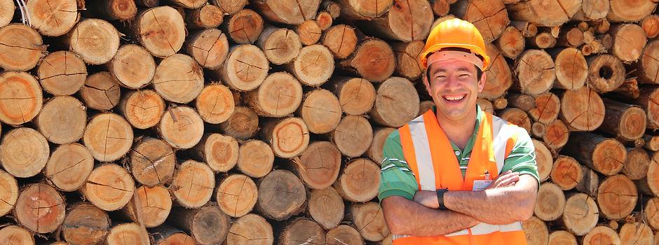 Funcionário da Presto Florestal