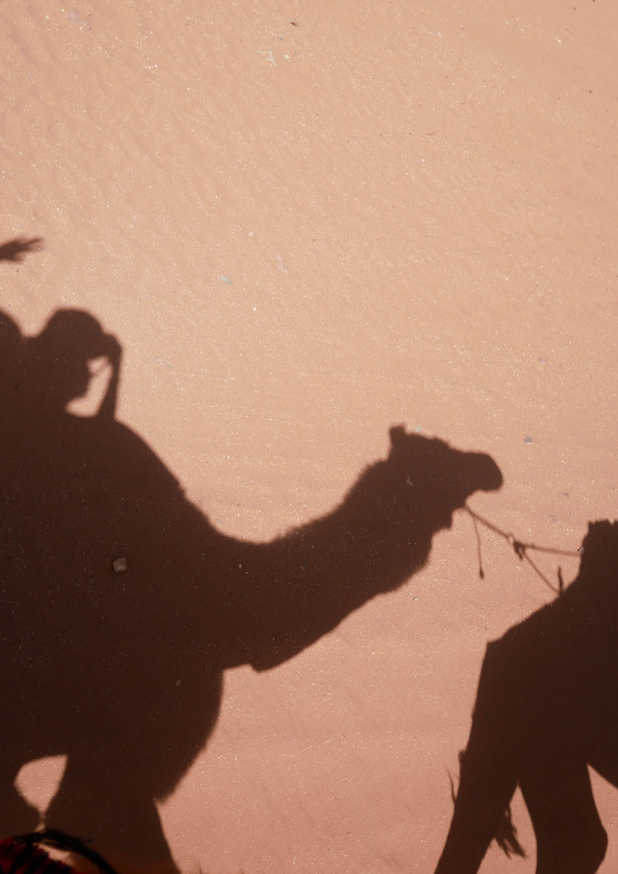 Désert du Wadi Rum - Jordanie