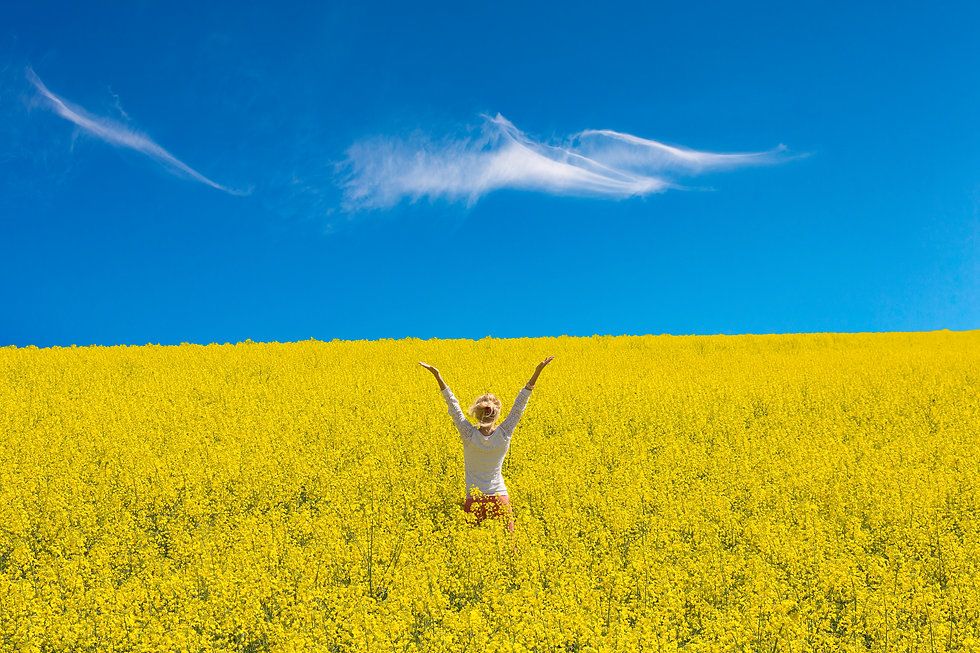 A woman stands in a field of yellow flow
