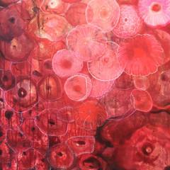 Red Garden 1