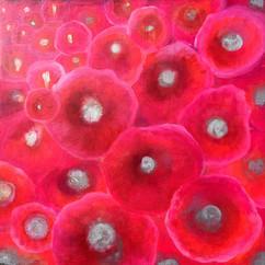 Hypnotic Poppies