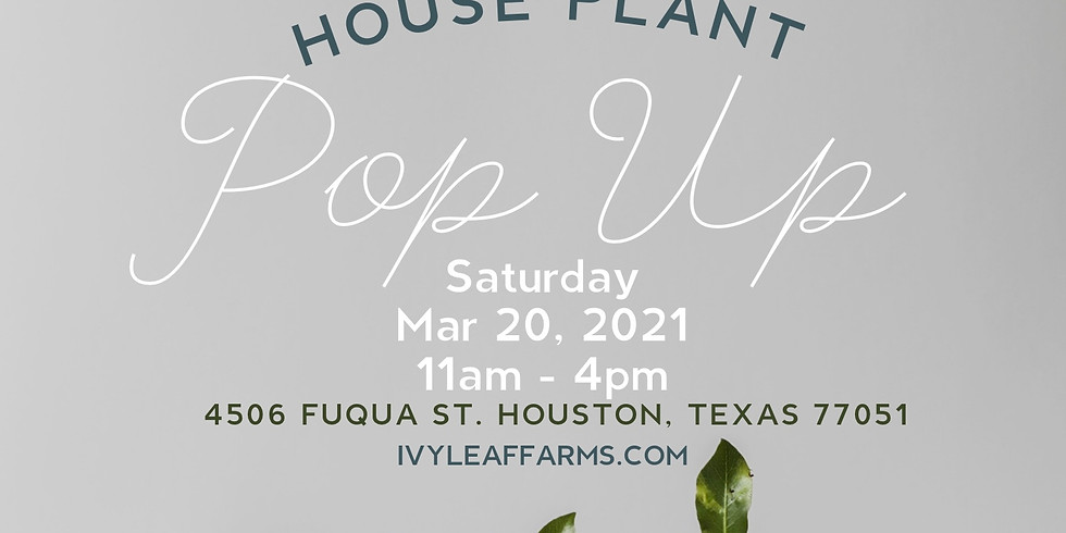 March Plant Pop Up