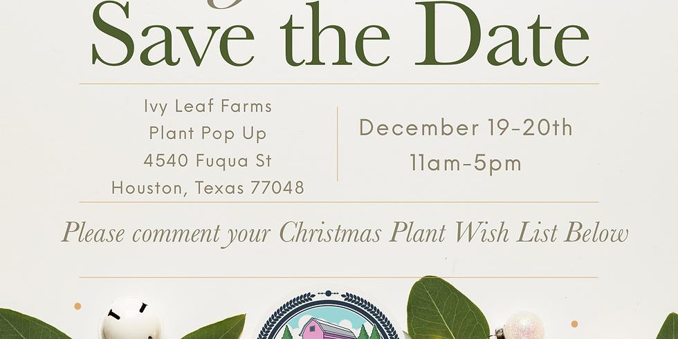 Merry Plantmas December 19-20th