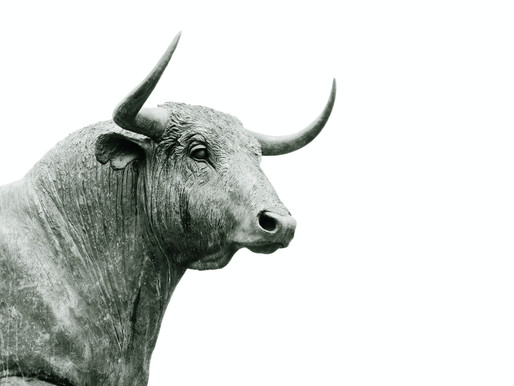 Will this Bull Market Ever End?