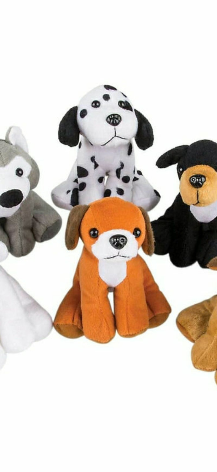 Adopt a Pet Birthday Party (ages 4-up)
