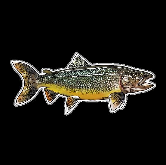 """2.75"""" x 6.25"""" Lake Trout"""