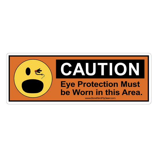 "3"" x 9"" Eye Protection"