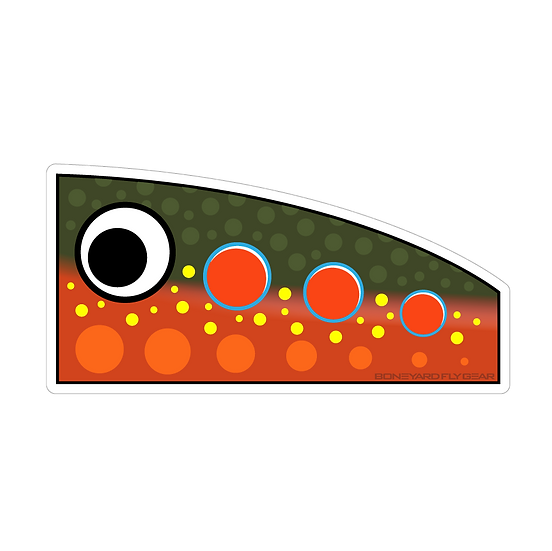 "3.25"" x 6.5"" Brook Trout Popper Decal"