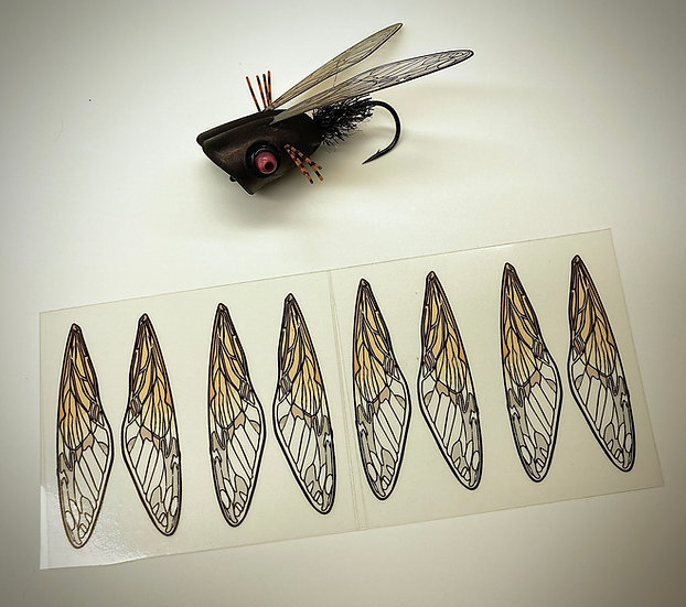 Cicada Wings - enough for 4 flies