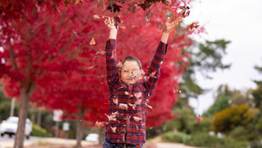 Is this the age lost in between? - Wodonga Children's Photographer