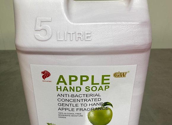 Hand Soap Liquid 5L/Btl