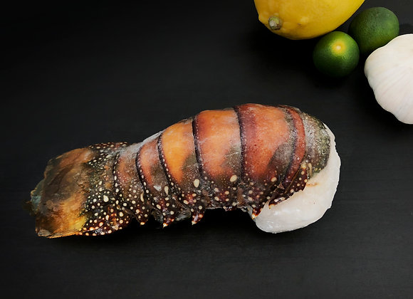 Lobster Tail 200-230g/tail