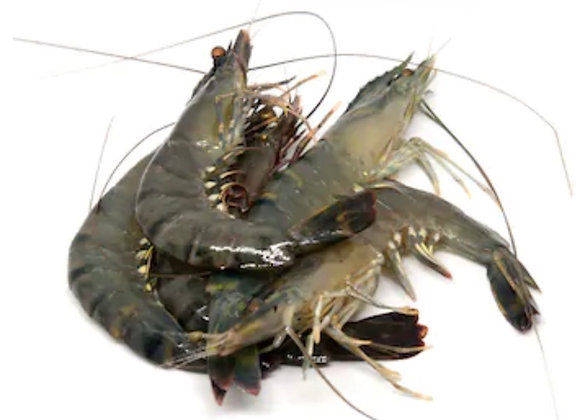 Tiger Prawn Whole L 21-25pc/kg