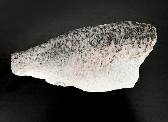 Seabass Fillet 300-400g/pc