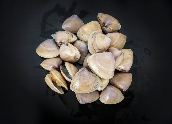 Manila Clam 1kg/pkt