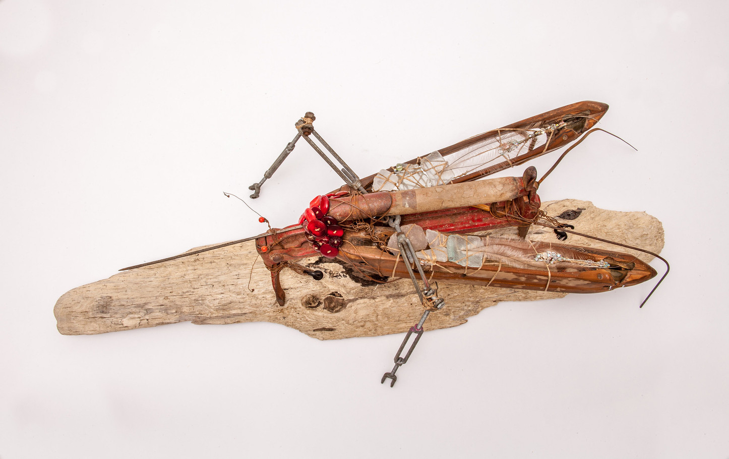 Zika-Photo 3