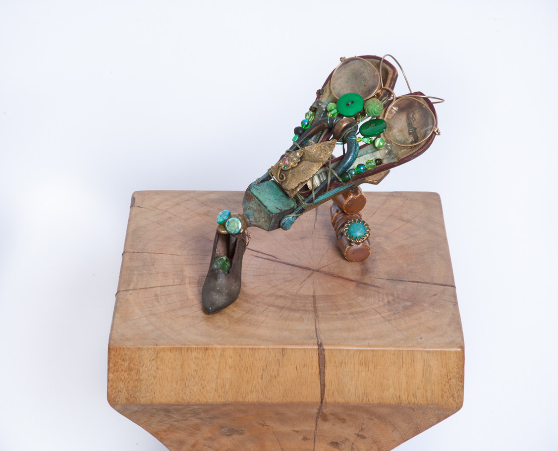 Shoe Fly