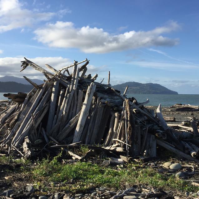 driftwood house-elwha