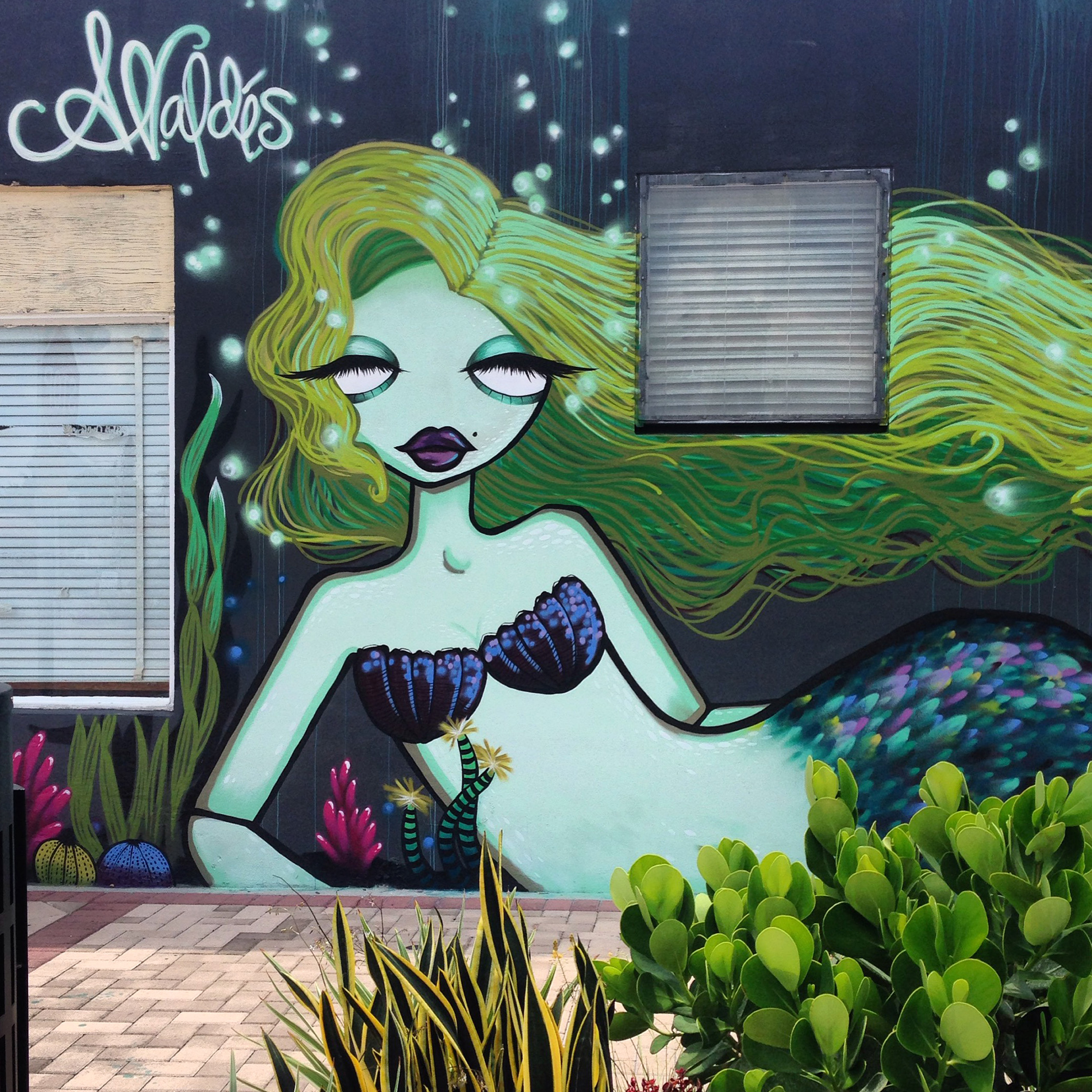 Mermaid Mural by Amanda Valdes