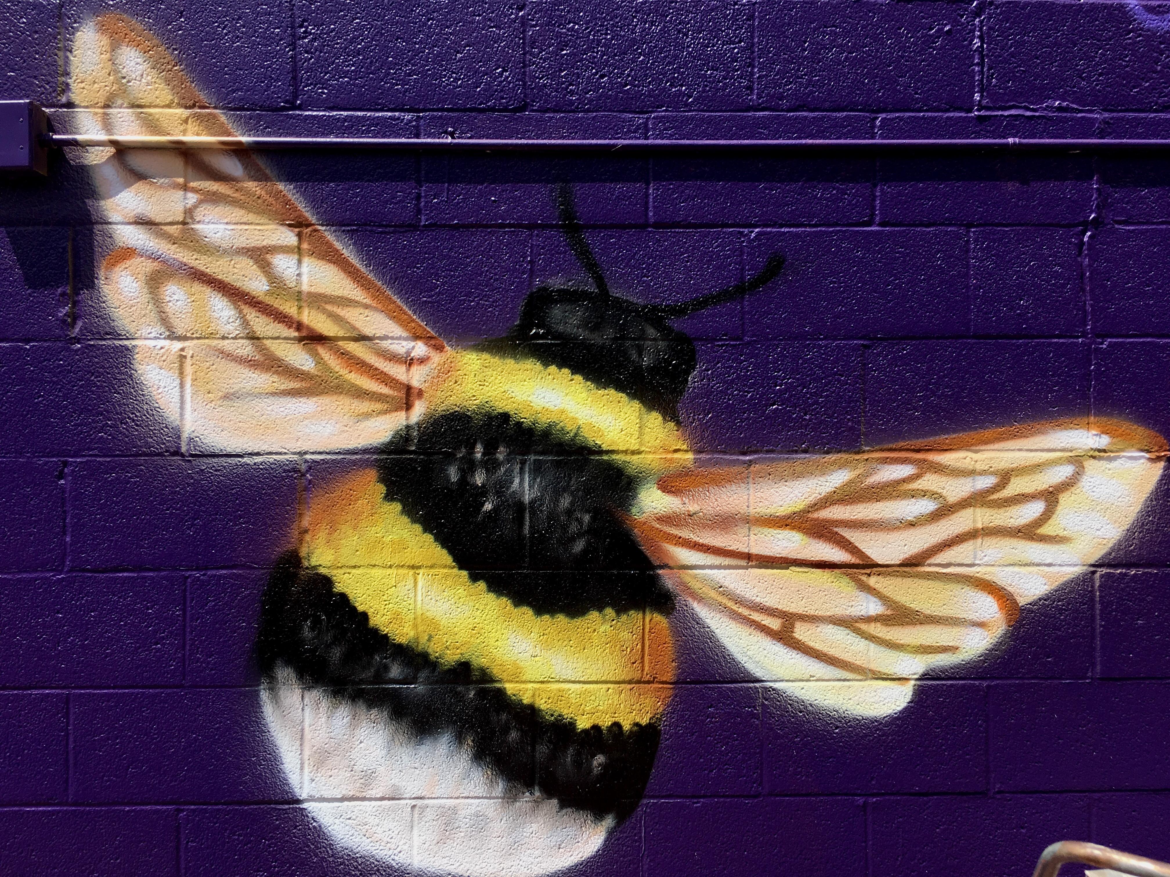 Amanda Valdes Dubuque Iowa Mural